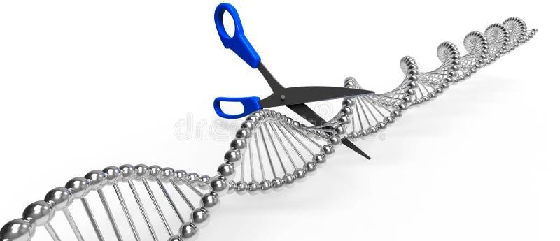 CORTE DO ADN ilustração do vetor