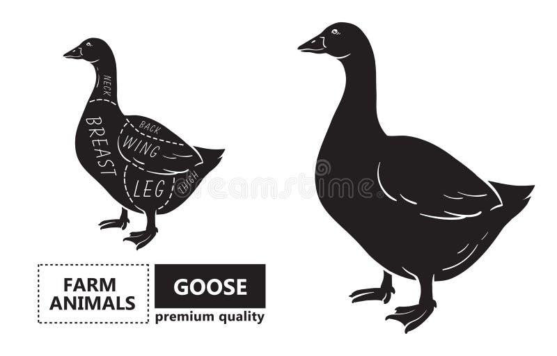 Corte do grupo da carne Diagrama do carniceiro do cartaz, esquema - ganso Ilustração do vetor ilustração stock