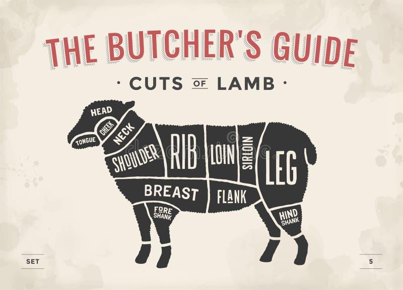 Corte do grupo da carne Diagrama do carniceiro do cartaz e esquema - cordeiro Desenhado à mão tipográfico do vintage Ilustração d