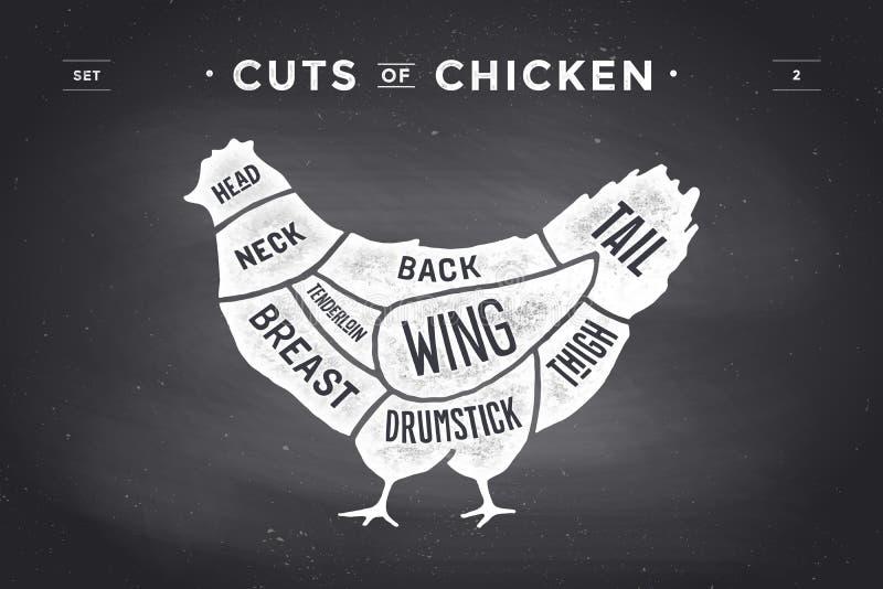 Corte do grupo da carne Diagrama do carniceiro do cartaz e esquema - galinha Desenhado à mão tipográfico do vintage Ilustração do ilustração do vetor