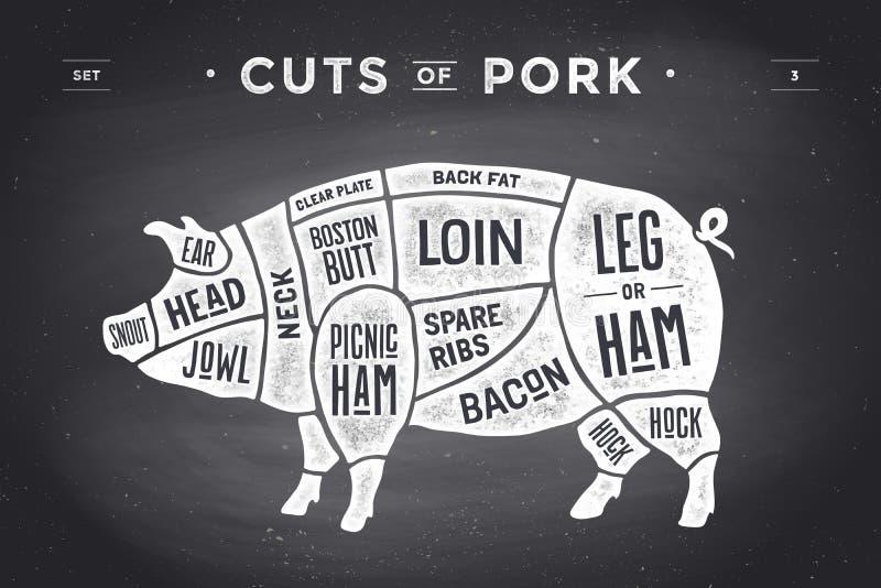 Corte do grupo da carne Diagrama do carniceiro do cartaz, esquema e guia - carne de porco Desenhado à mão tipográfico do vintage  ilustração royalty free