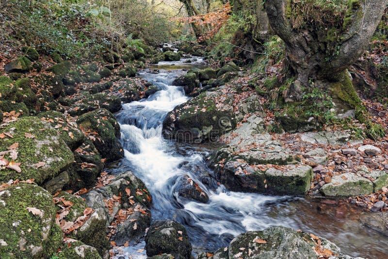 Corte do rio de Glenary através das rochas imagens de stock royalty free