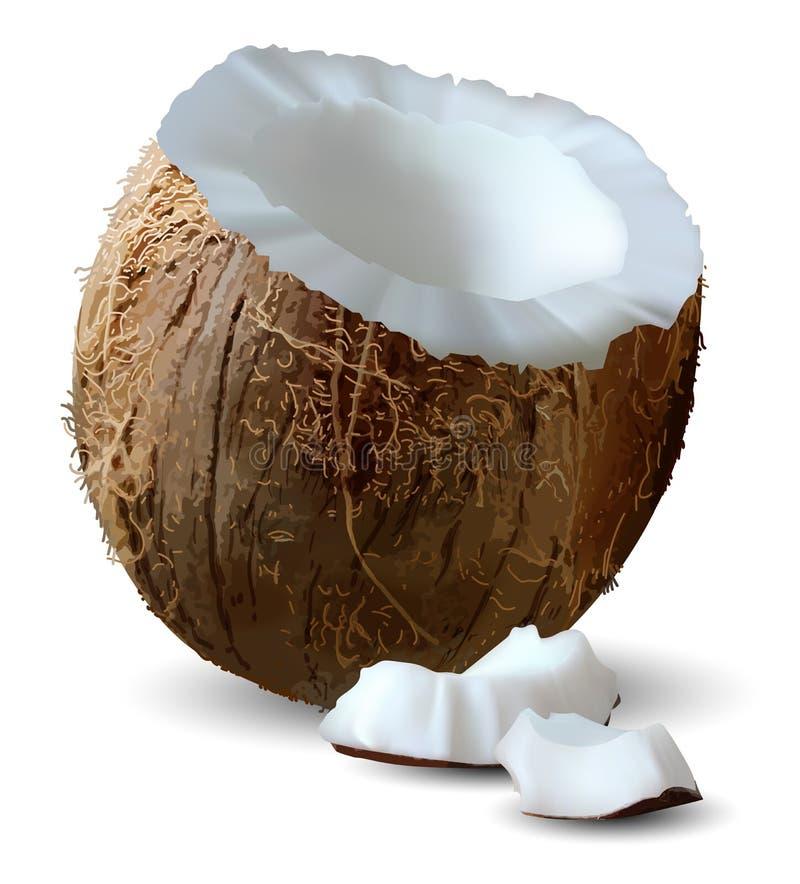 Corte el coco y varios pedazos de él en un fondo blanco vector 3d Ejemplo realista arriba detallado ilustración del vector