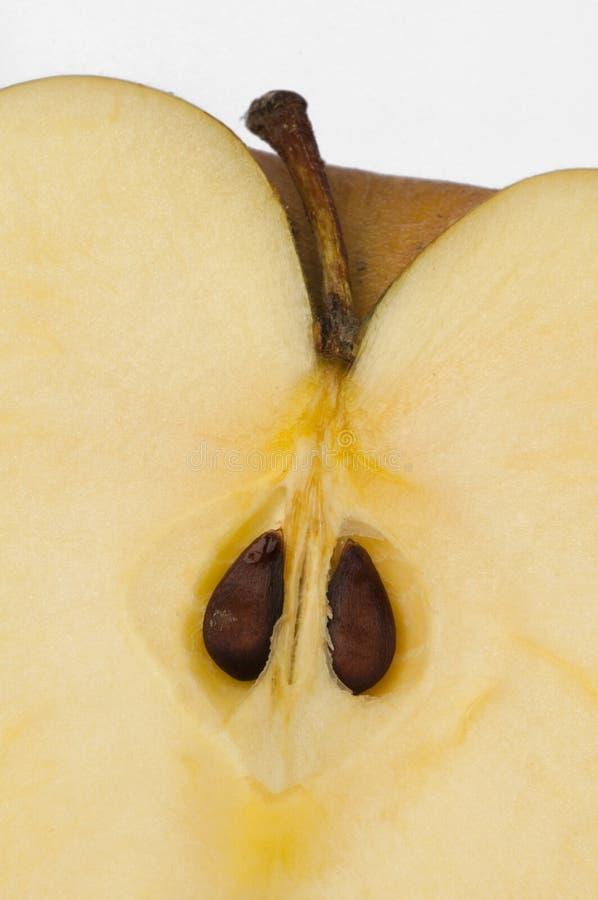 Corte el fondo del primer de la manzana foto de archivo