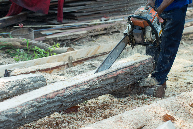 Corte a madeira com a serra de vaivém na oficina fotos de stock