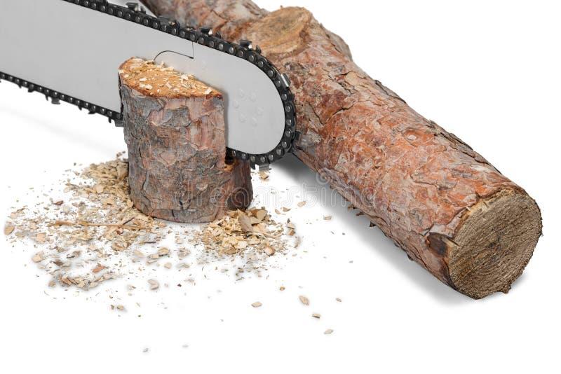 Corte a madeira e a serra de cadeia do fogo de logs isoladas no branco imagem de stock