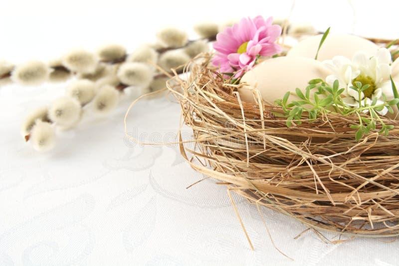 Corte os ovos brancos de easter do tiro da foto no ninho com flores fotografia de stock