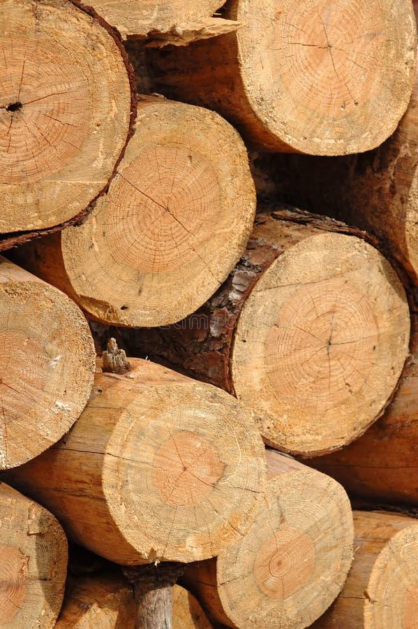 Corte recientemente la madera de construcción fotografía de archivo