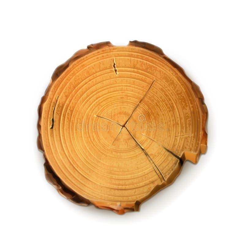 Corte redondo de coto de árvore ilustração royalty free