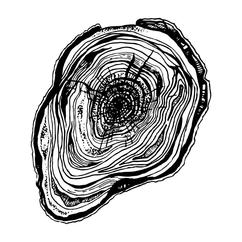Corte tirado mão da madeira ilustração stock