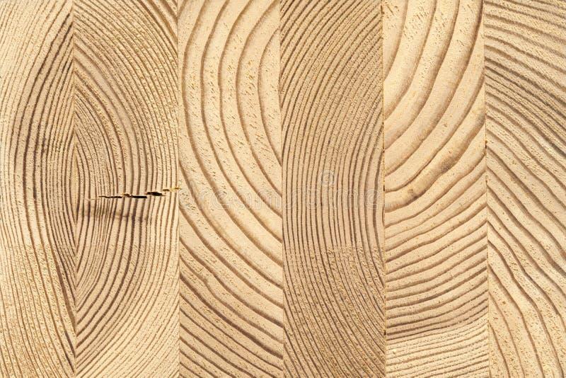 Corte transversal de madera de madera pegada del pino imagenes de archivo