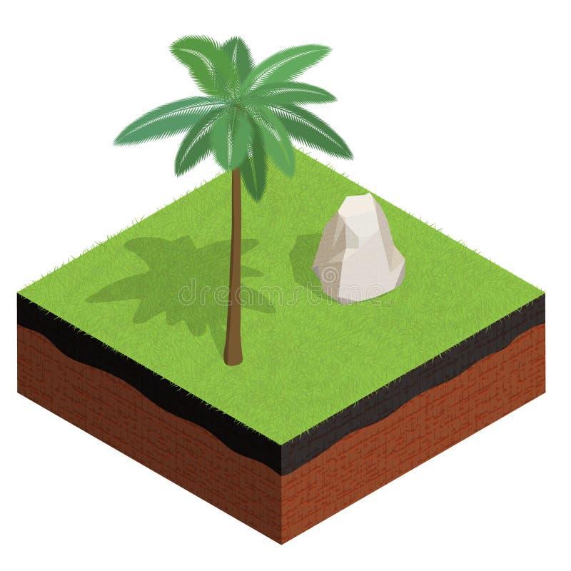 Corte transversal de tierra con la hierba, palma, piedra st isométrico 3d ilustración del vector