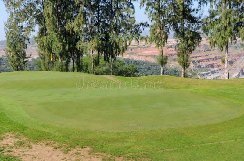 Corte verde del golf con los árboles de pino fotografía de archivo libre de regalías