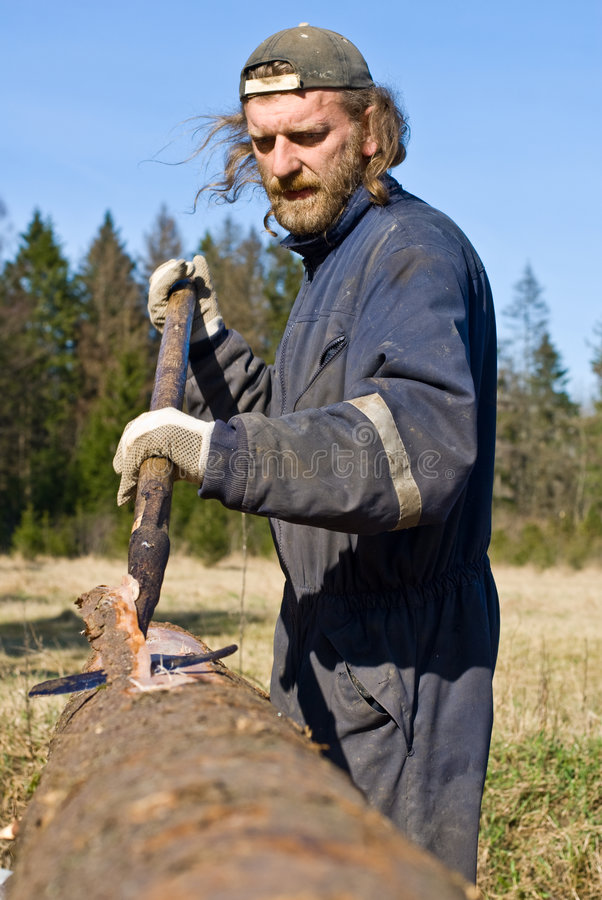 Corteccia della sbucciatura dell'operaio del legname fotografia stock