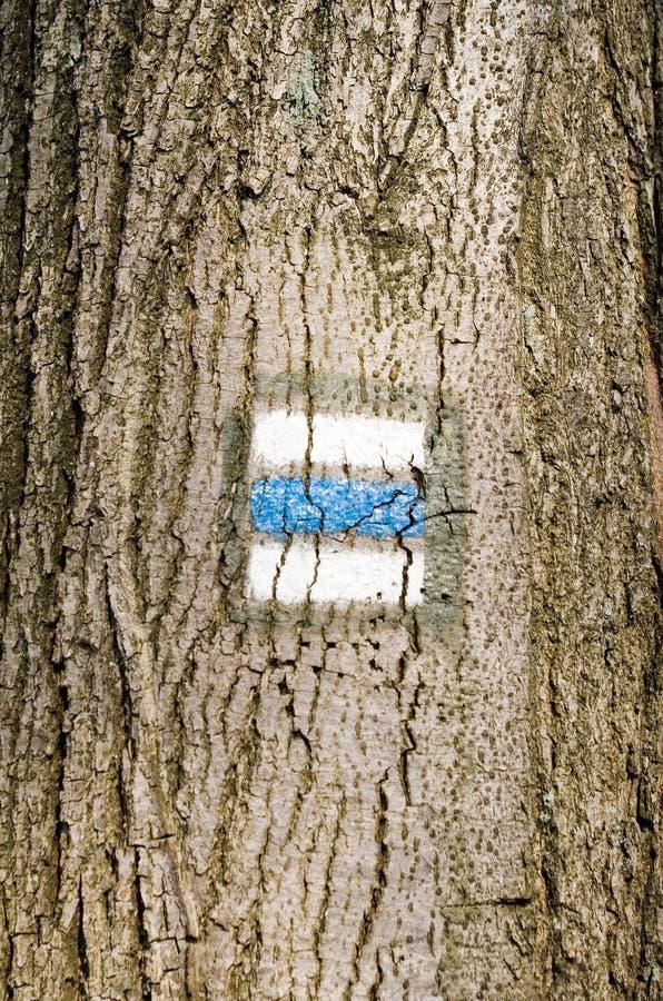 Corteccia di albero con il segno fotografie stock