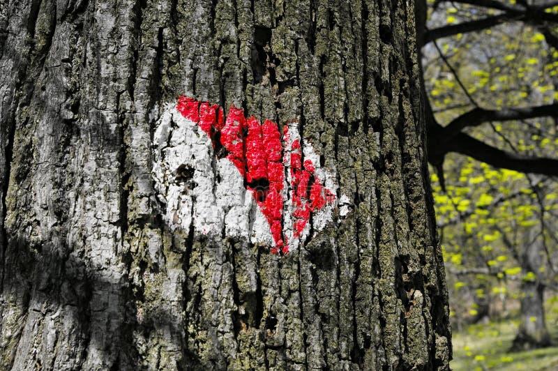 Corteccia di albero con il segno immagini stock libere da diritti