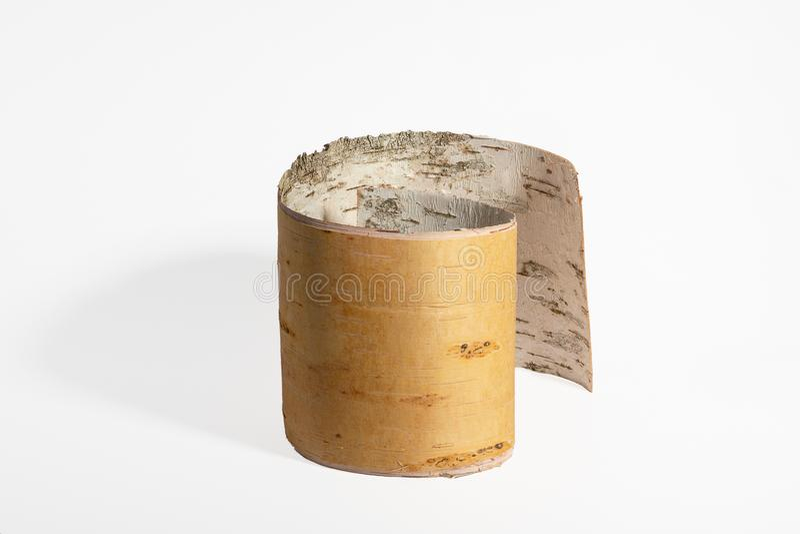 Corteccia di betulla rotolata immagine stock