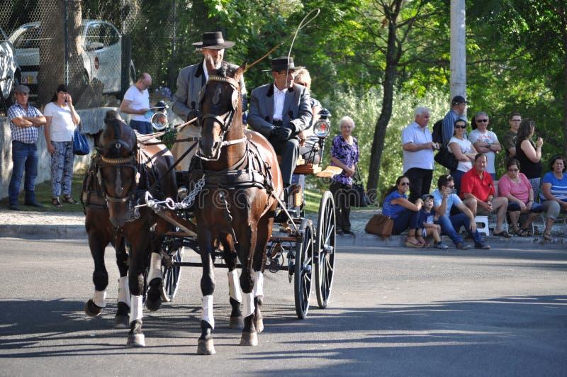 Cortejo robi Mordomo, Festa dos Tabuleiros zdjęcie royalty free