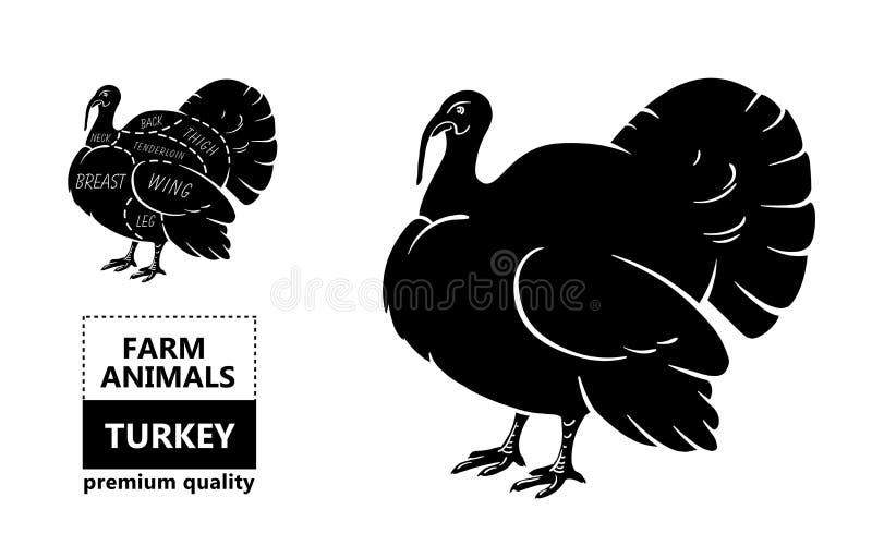 Cortes da carne Diagrama do carniceiro do cartaz e esquema - Turquia Tipográfico preto e branco desenhado à mão do vintage com te ilustração stock