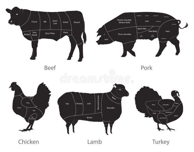 Cortes da carne do animal de exploração agrícola ilustração royalty free