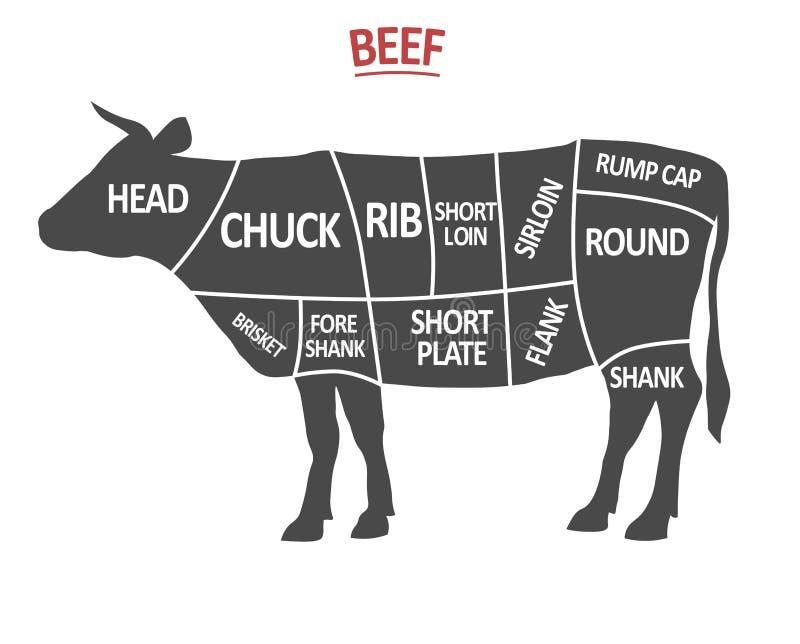 Cortes de carne Diagrama do carniceiro do cartaz Silhueta da vaca isolada Cortes da carne Esquema do corte da carne Vetor ilustração do vetor