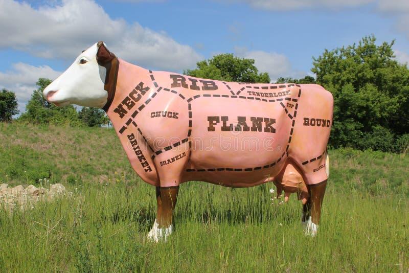 Cortes de carne em uma vaca fotos de stock royalty free
