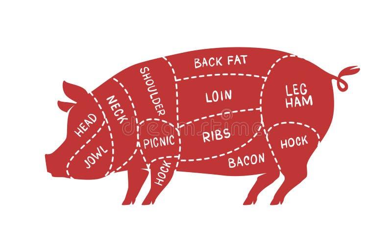 Cortes de carne, porco Carne de porco, ilustração do vetor do açougue ilustração do vetor