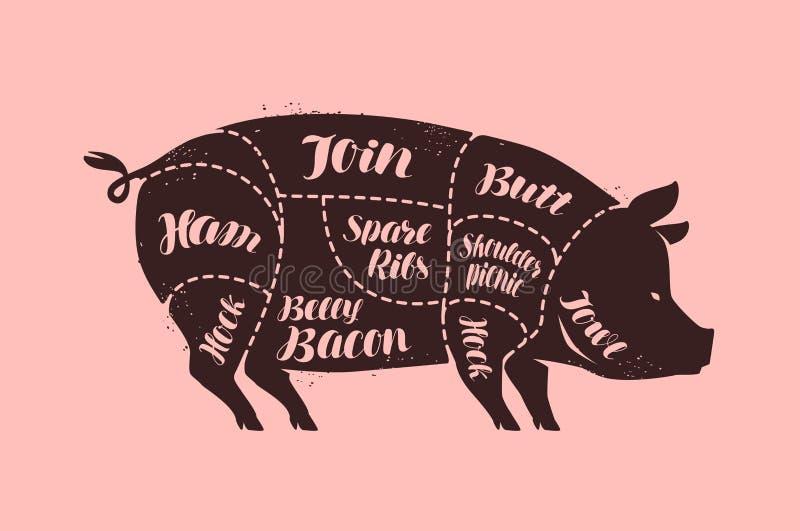 Cortes de carne, porco A?ougue, ilustra??o do vetor da carne de porco ilustração royalty free