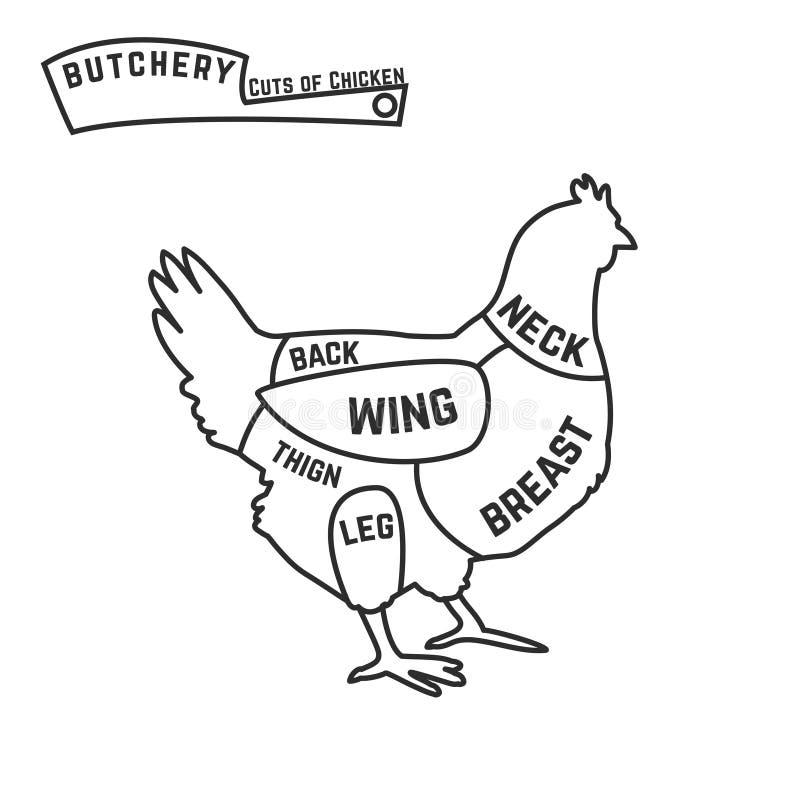 Cortes del diagrama del carnicero del pollo stock de ilustración