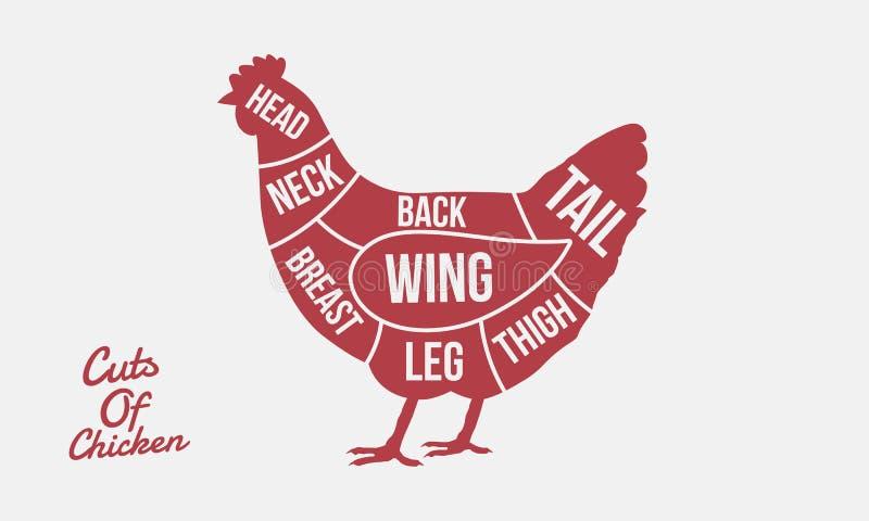 Cortes del pollo Cortes de la carne Silueta del pollo aislada en el fondo blanco Cartel del vintage para la carne, carnicería ilustración del vector
