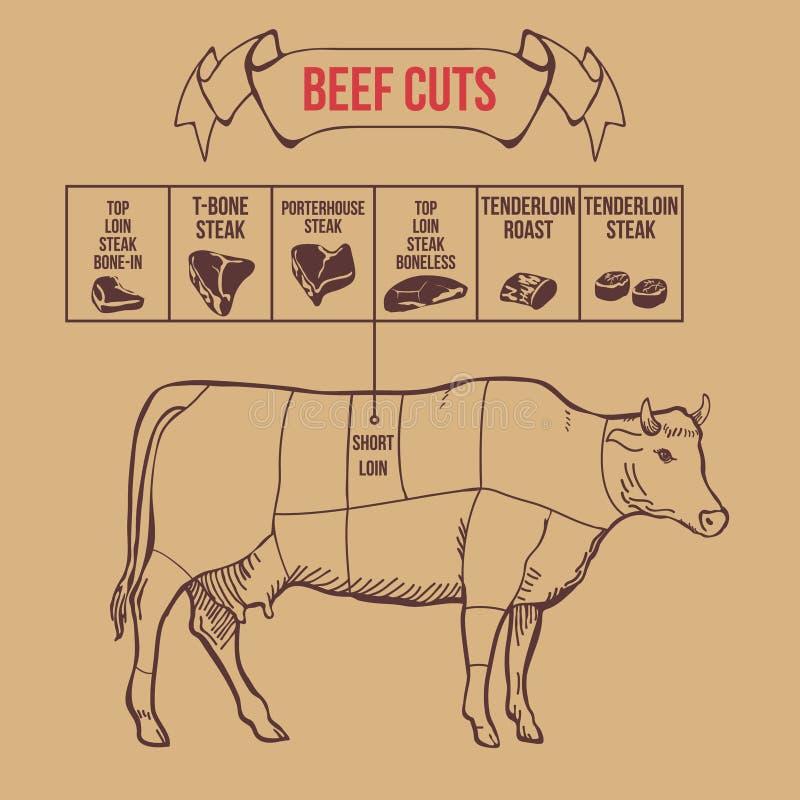Cortes do carniceiro do vintage do vetor do esquema da carne ilustração do vetor