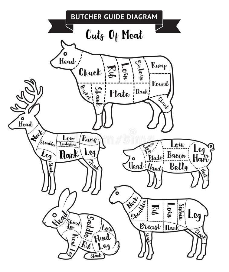 Cortes do guia do carniceiro do diagrama da carne ilustração do vetor