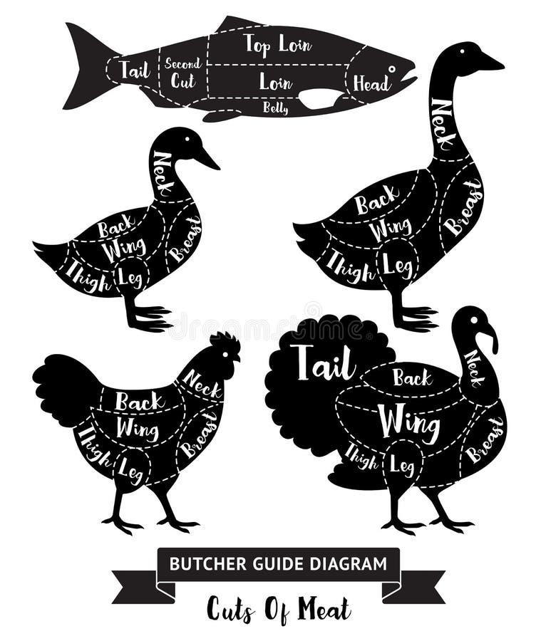 Cortes do guia do carniceiro do diagrama da carne ilustração stock