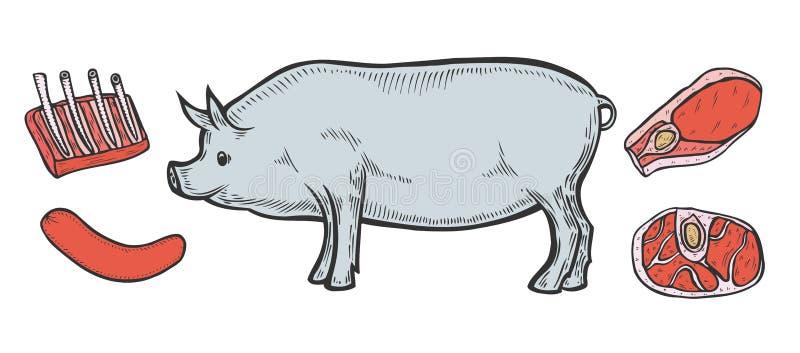 Cortes do presunto da carne de carne de porco ilustração royalty free