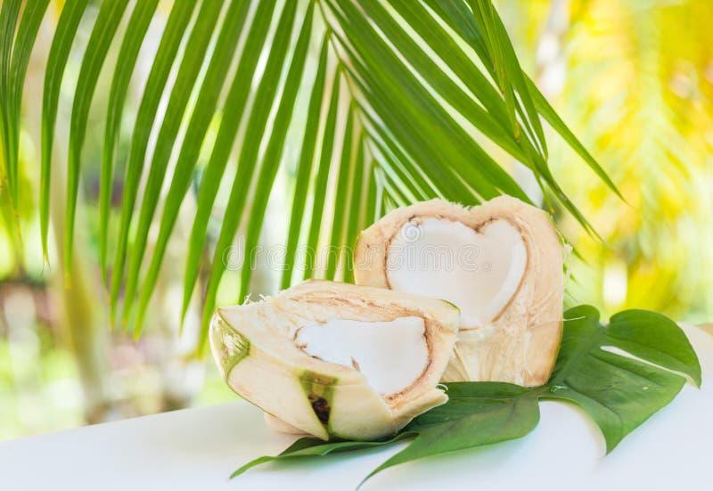Cortes tropicales del coco Dieta ex?tica del vegano del verano Comida sana vegetariana verde madura fresca fotografía de archivo