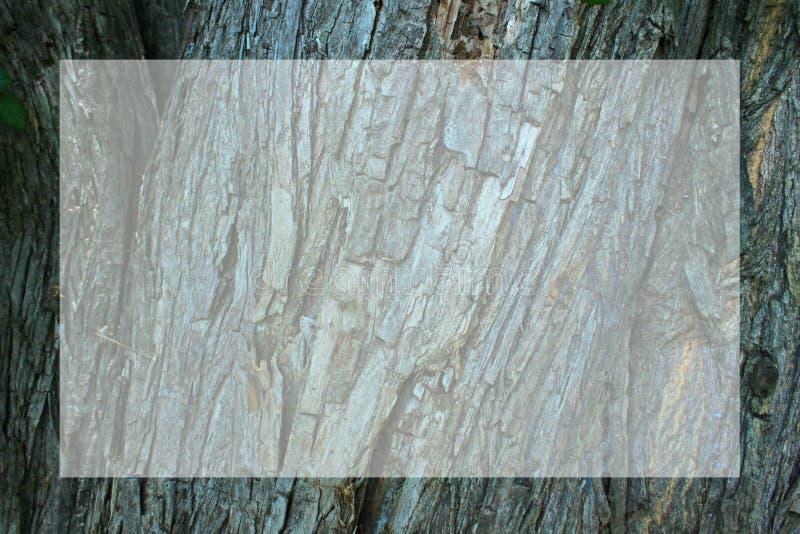 Corteza del fondo de madera de la superficie áspera del marco del árbol ilustración del vector