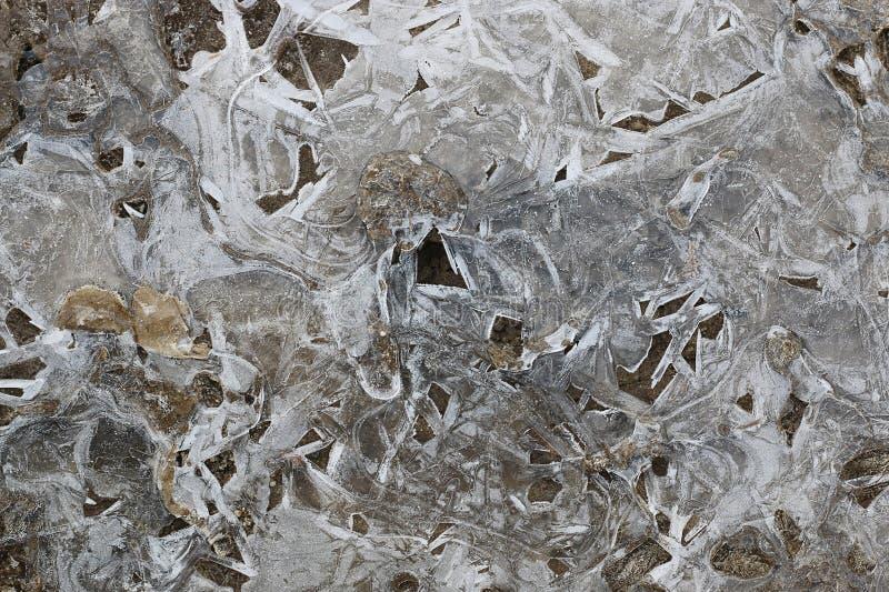 Corteza del hielo en un charco de hojas fotografía de archivo