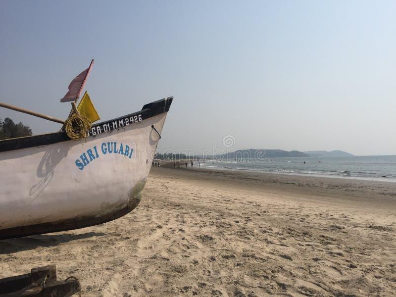 Corteza en Goa, playa de Morjim foto de archivo