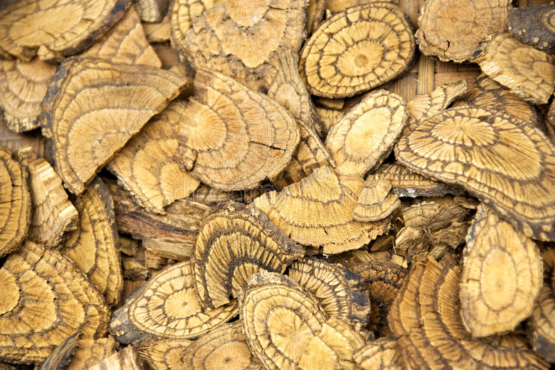 Cortezas de árbol tradicionales chinas de la medicina imágenes de archivo libres de regalías