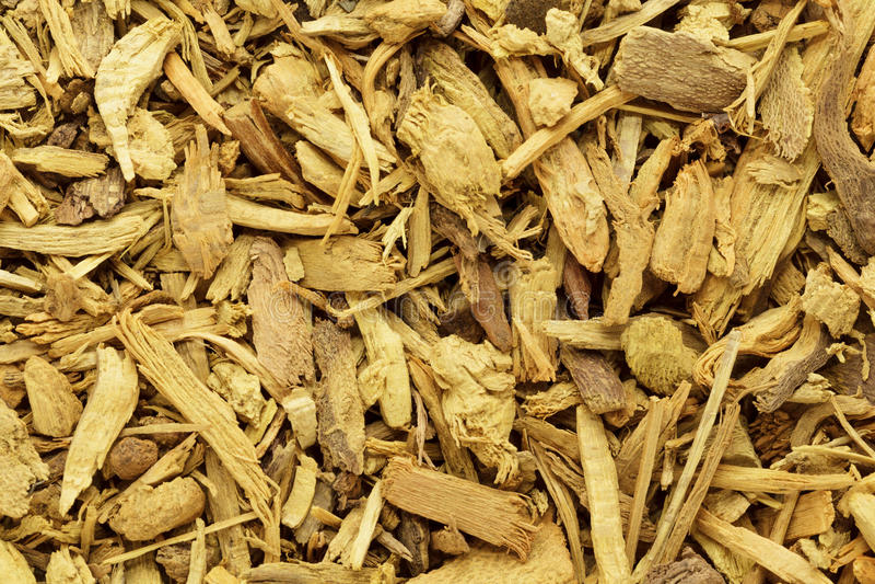 Cortezas orgánicas del bérbero indio (aristata del Berberis) fotografía de archivo libre de regalías