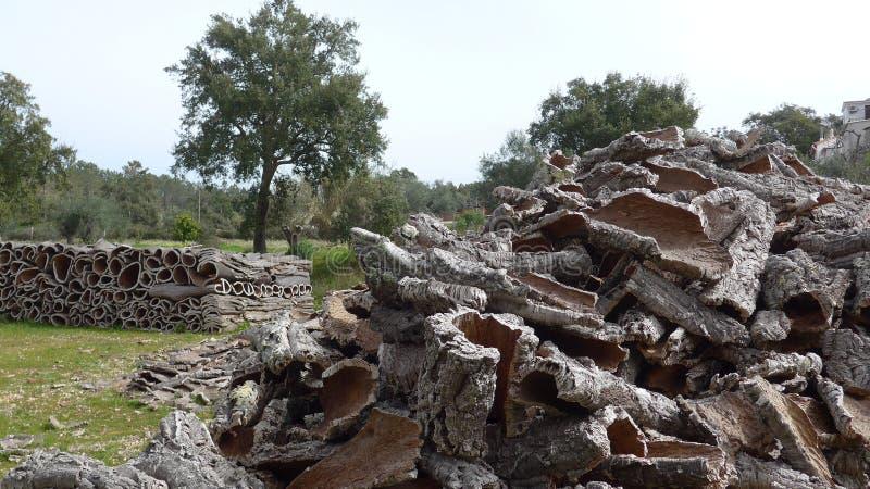 Cortiça, partes da cortiça Muitas partes do carvalho de cortiça descascam, matéria prima natural, pronta ao transporte fotos de stock