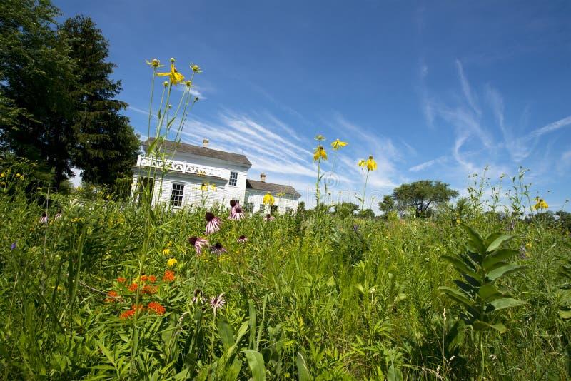 Cortijo del país viejo con los Wildflowers de la pradera foto de archivo