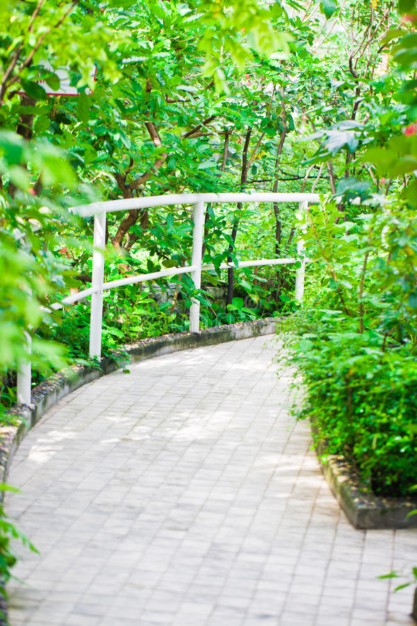 Cortile del giardino convenzionale fotografia stock