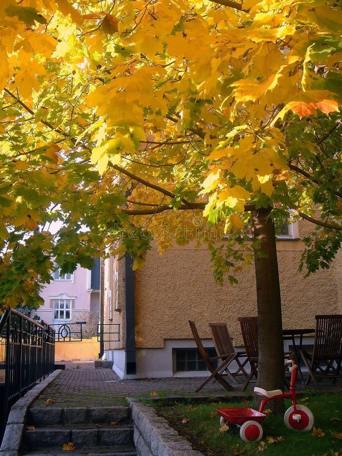 Cortile della città in autunno fotografia stock libera da diritti