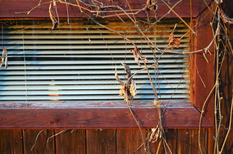 Cortinas em uma janela de uma casa de madeira fotografia de stock royalty free