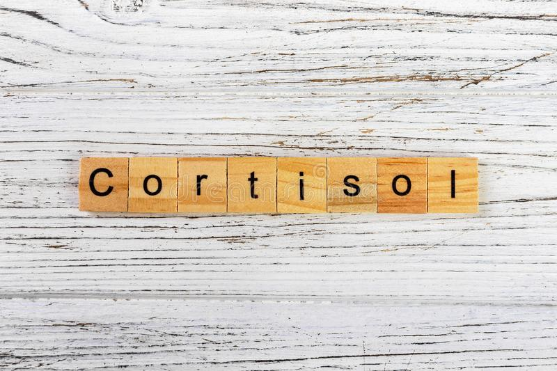 CORTISOL word made with wooden blocks concept.  royalty free stock photos