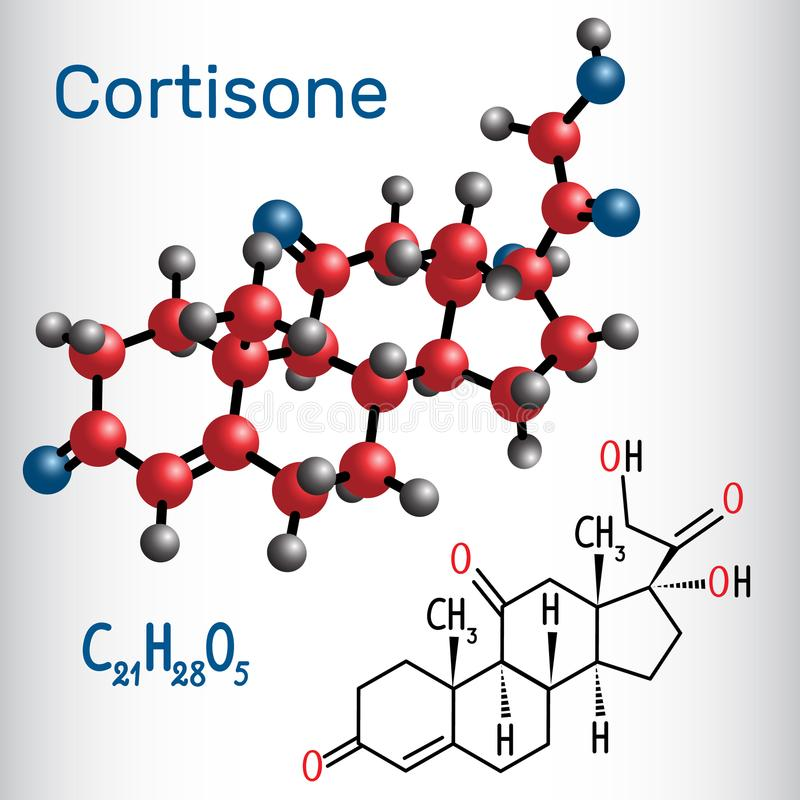 Cortisone Structure