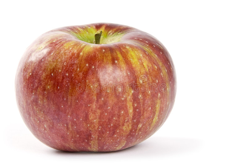 Cortland Apple royalty free stock photo