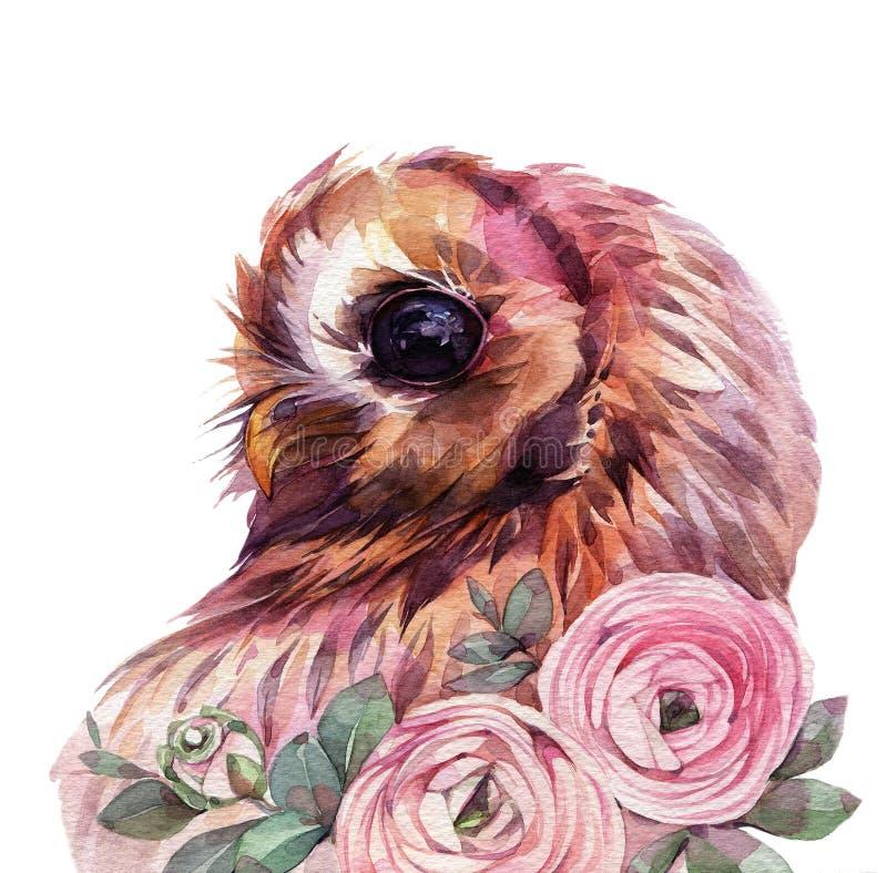 Coruja bonito da aquarela ilustração stock