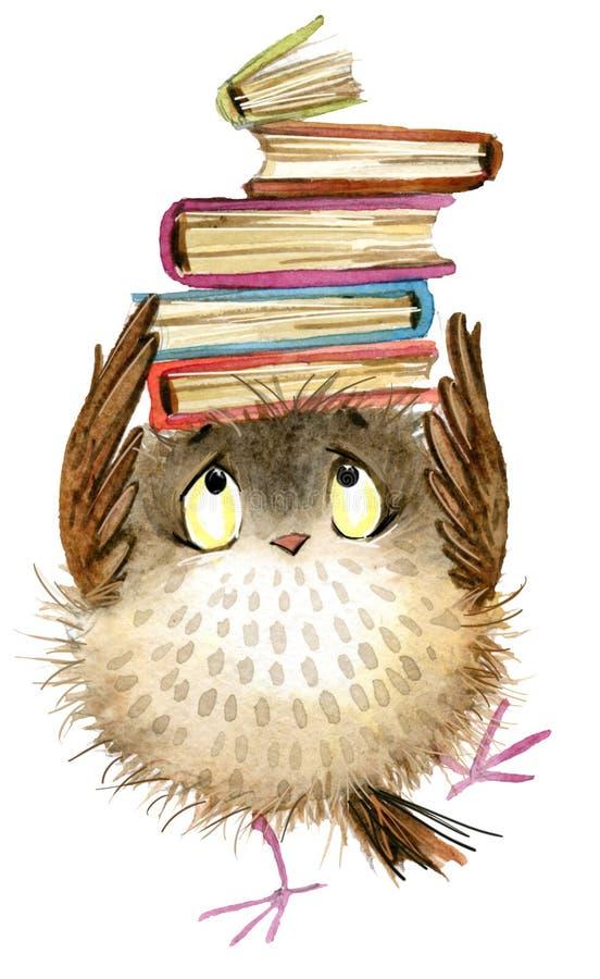 Coruja Coruja bonito pássaro da floresta da aquarela ilustração de livros da escola Pássaro dos desenhos animados ilustração do vetor
